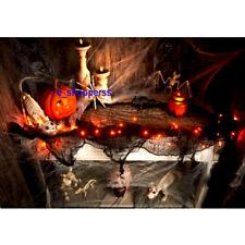 Halloween Light Up Black Gauze Garland 30 Purple Orange LED Lights/Prop/Party