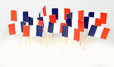 "100 Count Box 2.5"" French/France Flag Mini Toothpicks Picks"