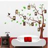 Wandtattoo Wandsticker Baum Foto Rahmen Groß XL Premium  Geschenkidee Deko Neu