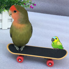 Pet Bird Parrot Sliding Toys Skateboard Cockatiel Exercise Bite Climb Toy Flower