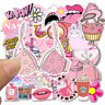 50pcs Pink Daddy Skateboard Stickers Vinyl Laptop Luggage Decals Random Graphics