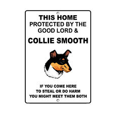 Collie Smooth Dog Home protected by Good Lord and Novelty Metal Sign