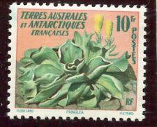 T.A.A.F. / TIMBRE TERRES AUSTRALES // FLORE // N° 11 * COTE + 14,50 €