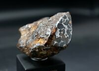 Meteorite SERICHO, Pallasite Kenya, Iron Stone Meteorite, Great Collections 241g