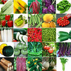 Various Heirloom Garden Vegetable Seed Non-GMO Seeds Bank Survival Organic Plant