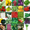 Various Heirloom Garden Vegetable Seed Non-GMO Seeds Bank Survival Organic Plant