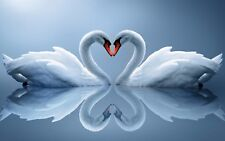 "Blue Swans in Love Heart Peace Calm 16""x20"" Canvas Picture Art Print Reflections"