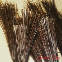 100 Hand Selected Stripped Peacock Quills (Natural) - Fly Tying Materials