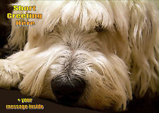 PERSONALISED OLD ENGLISH SHEEPDOG BIRTHDAY ANY OCCASION CARD Illus Insert