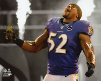 Baltimore Ravens RAY LEWIS Glossy 8x10 Photo NFL Football Print Poster