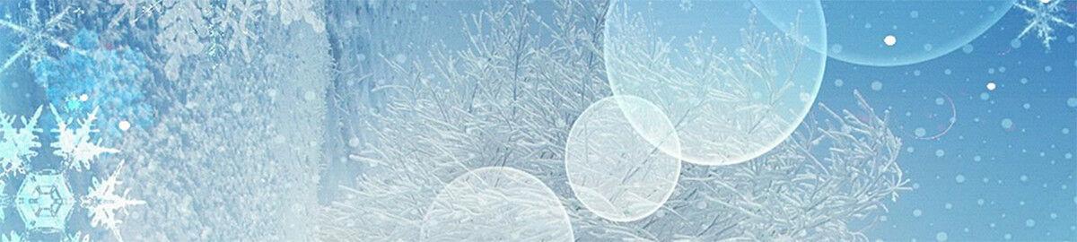 winterjet24