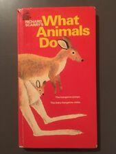 What Animals Do By Richard Scarry Vintage Hardboard Children's Book
