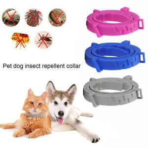 Anti Flea and Tick Neck Collar For Pet Dog Cat 8 Months Protection Adjustable