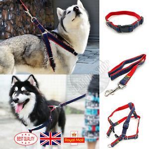 Pet Dog Lead Leash Adjustable Collar Vest No-Pull Padded Harness Size M / L / XL