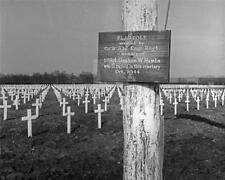1945 US Army 332 Engineer Regiment Lorraine France Cemetery WWII Photo FL26