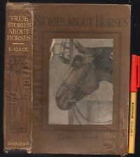 1st Edition 1914? TRUE STORIES ABOUT HORSES Liliian GASK illus Patten WILSON