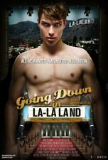 Going Down In La La Land (Dvd, 2011) Gay Interest