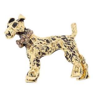 Wire Hair Fox Irish Terrier Dog with Diamante Bow Tie Collar