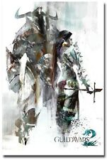 "Guild Wars 2 GW2 Norn Race Game Poster Huge Silk Fabric Canvas 36""x 24"""