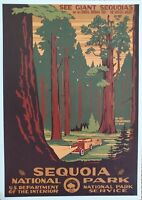 WPA Sequoia National Park Postcard Art by Doug Leen Brian Maebius 1935-43 Image