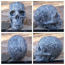 "2.0"" Chinese Crazy Lace Skull Carved Stone 3.4oz 96.3g Crystal Healing Realistic"