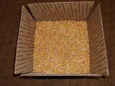 Shelled Corn Squirrel, Deer Turkey Bird  Wildlife Pet feed crafts bingo 20#