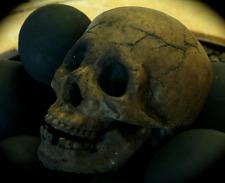 Fire Brick Ceramic Skull - Earthen Brown
