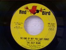 "JELLY BEANS ""THE KIND OF BOY YOU CAN'T FORGET / BABY BE MINE"" 45"