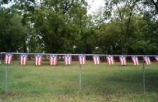Puerto Rico Rican 12x18 Bunting Party Flags Banner (12 Flags 20 foot long)