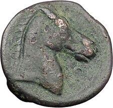 Carthage in Zeugitana 300BC Tanit Cult & Horse  Rare Ancient Greek Coin  i47982
