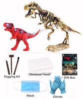 3D Dino Fossil Dig Paleontology STEM Toy T-REX Skeleton Model Education for Kids