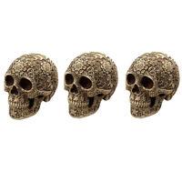 3x Lifesize Resin Human Head Skull Anatomical Skeleton Model Antique Decor