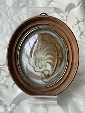 ANTIQUE FRENCH MOURNING HAIR ART CONVEX GLASS OVAL WOODEN FRAME/ RELIQUARY