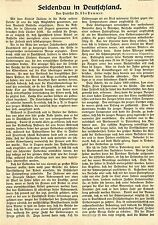 Prof. Udo Dammer: (guerra) Seidenbau in Germania * Documento di testo 1915
