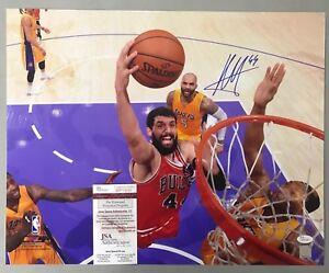 91301 Nikola Mirotic Signed 16x20 Basketball Photo AUTO JSA COA Chicago Bulls