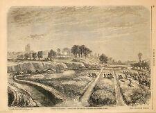 Stampa antica BATTAGLIA di PALESTRO Pavia attacco nelle risaie 1859 Old print