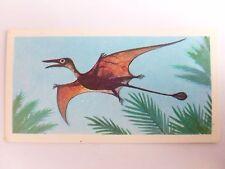 Brooke Bond Prehistoric Animals tea card 27. Rhamphorynchus. Dinosaur Pterosaur.
