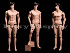 Male Mannequin Dress Form Display With flexible head arms and legs #Hm01-Mz