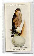 (Jk345-100) Ogdens,British Birds & Their Eggs,Sparrow Hawk,1939 #39