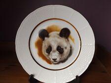 Decorative Panda Plate on Porcelain. Thun Czechoslovakia. Fantastic Condition