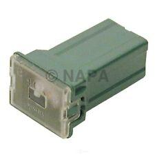 Napa # 784926 License Plate Instrument Panel Socket
