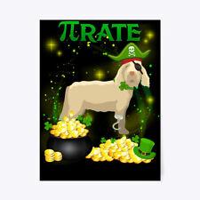 "Spinone Italiano Pi Day St Patricks Gift Poster - 18""x24"""