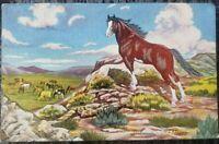 Vintage L.H Larsen Freedom Painting Postcard western horses