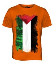 PALESTINE GRUNGE FLAG MENS T-SHIRT TEE TOP FILAST?N PALESTINIAN GIFT SHIRT