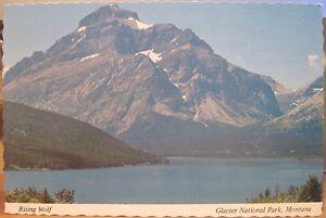 Montana Postcard RISING WOLF MOUNTAIN & Two Medicine Lake Glacier National Park