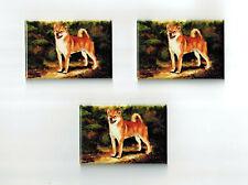 New Shiba Inu Pet Dog Magnet Set 3 Magnets By Ruth Maystead MFR # SHB-1