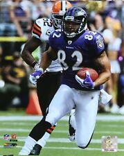 L. J. SMITH Baltimore Ravens OFFICIAL LICENSE NFL 8X10 PHOTO