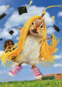 Chipmunk Wears Tassel Funny Graduation Card - Greeting Card by Avanti Press