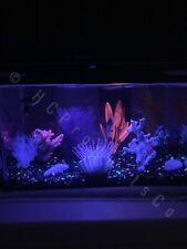 LED Aquarium Lights 20 Colors and Motion Options 10 inch Line Strip w/Remote