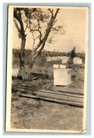 Vintage 1900's RPPC Postcard Beekeeping Hives on Farm